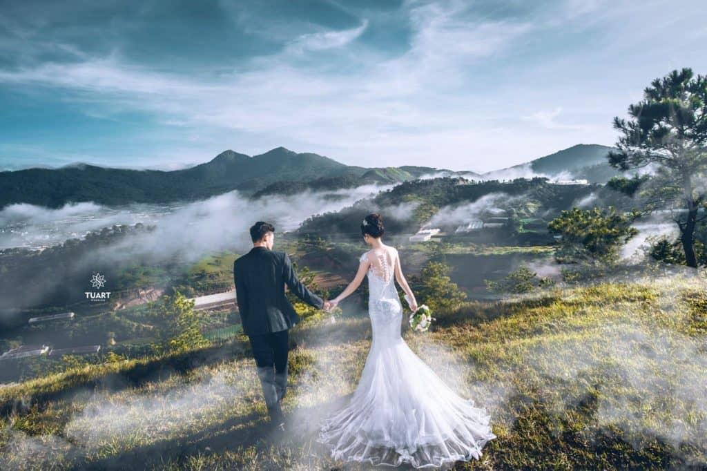 chụp ảnh cưới Đà Lạt - cây cô đơn